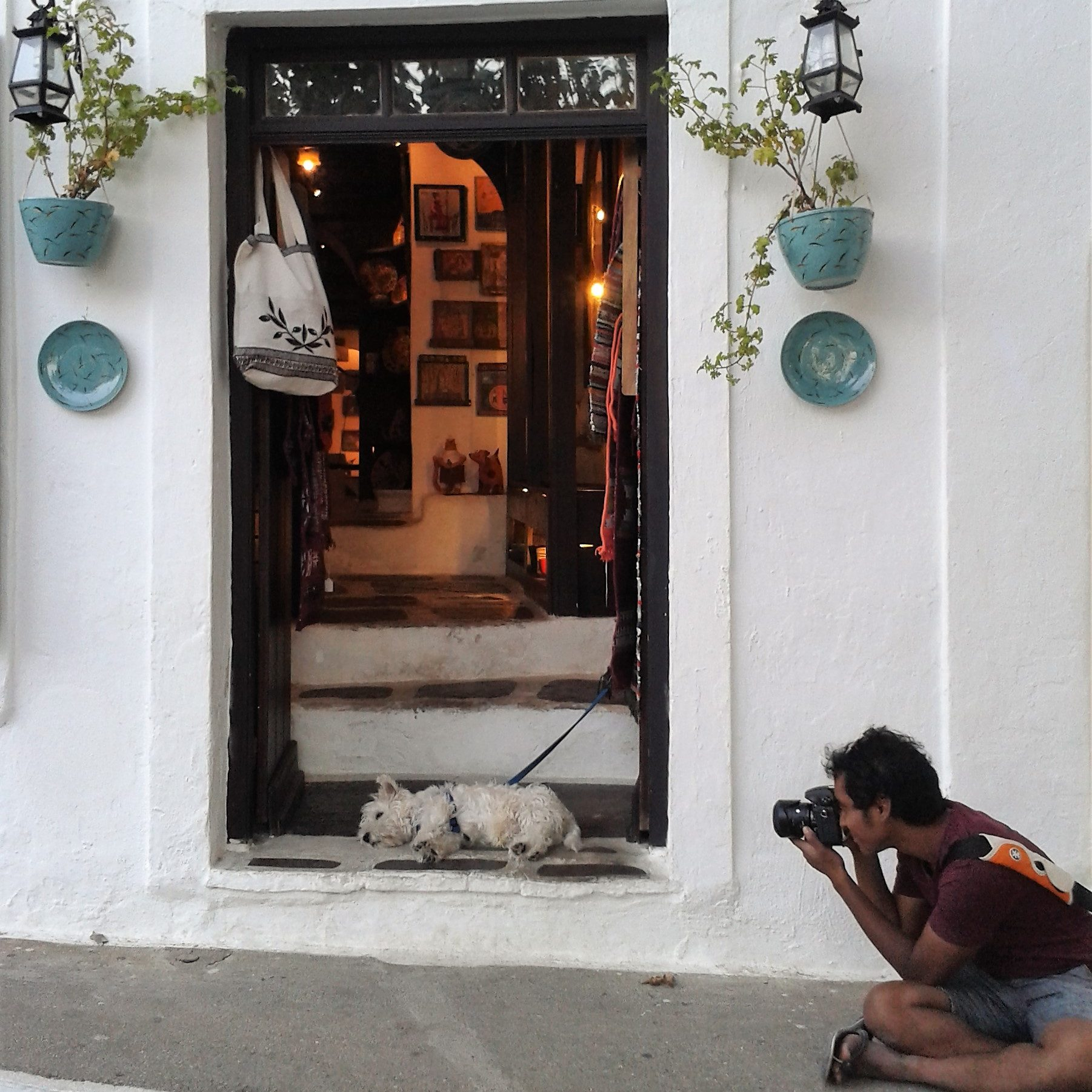 The photographer and the dog - Skopelos, Greece